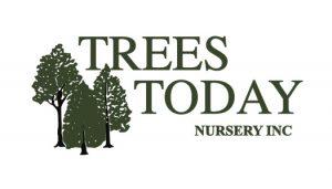TreesTodayLogo